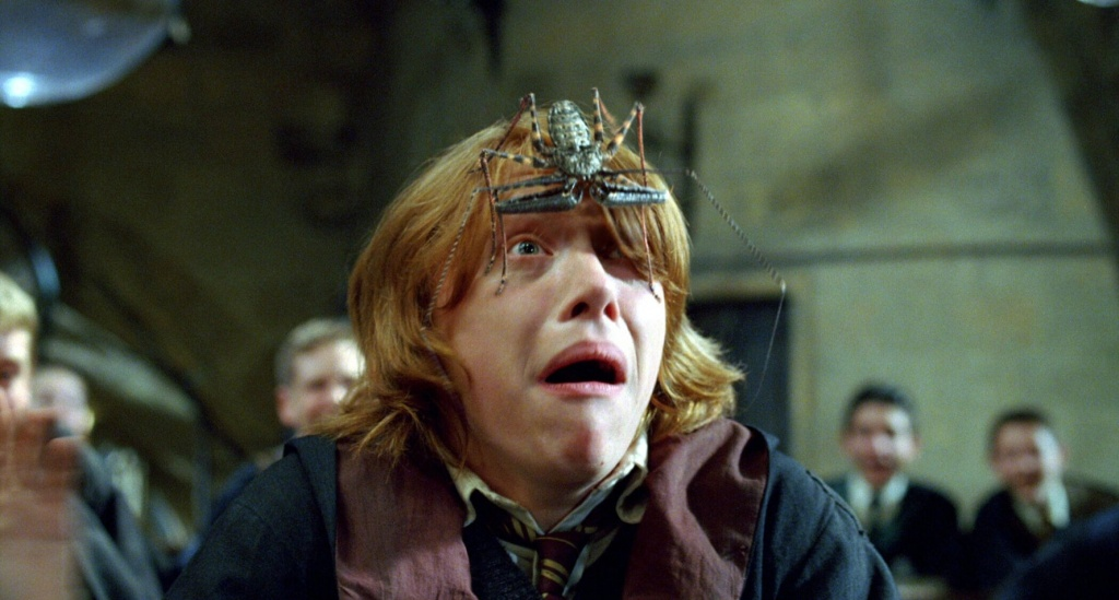 still_frame_harry-potter-and-the-goblet-of-fire-11