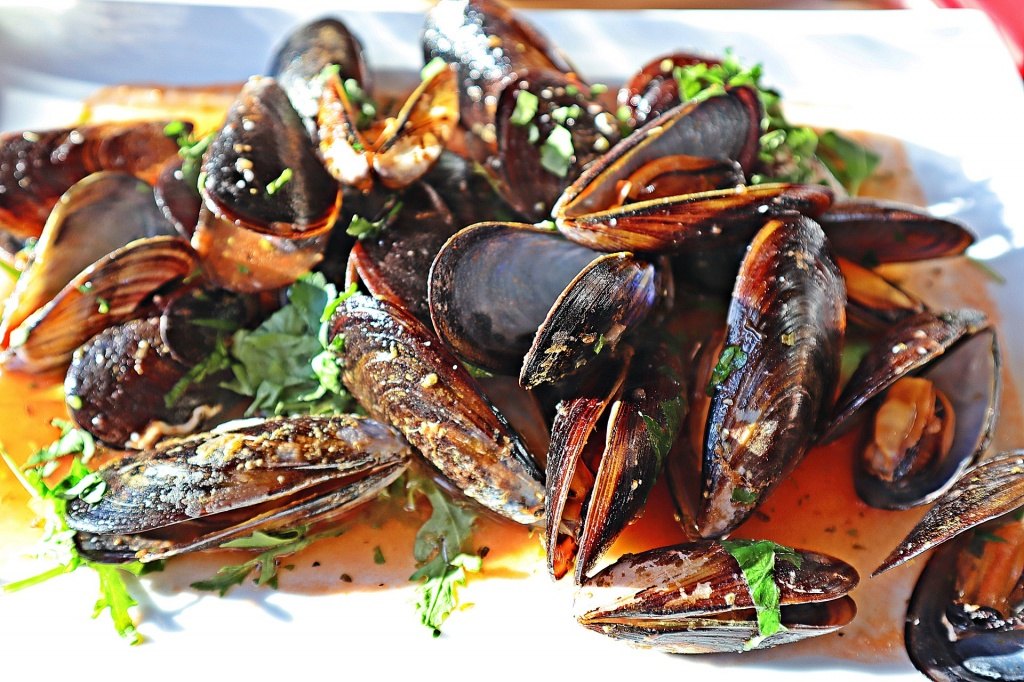 mussels-4753575_1920