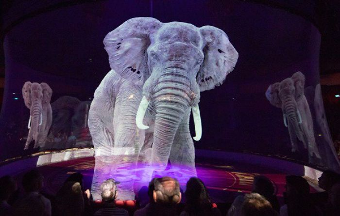 animal-holograms-circus-roncalli-germany-5-5cf652bf48b4c__700