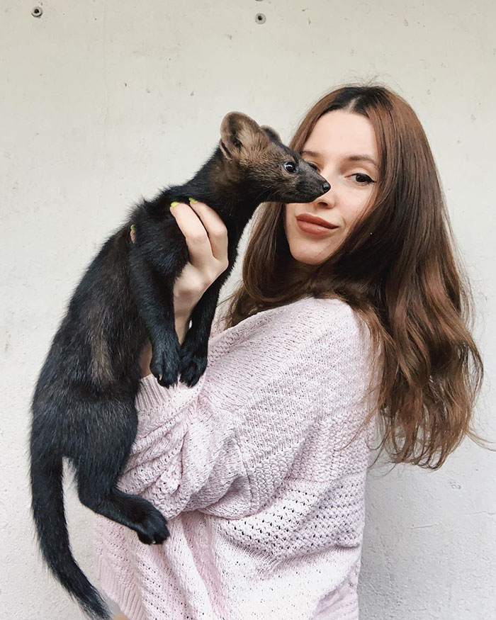 russian-woman-saves-sable-from-becoming-coat-7-5de0eb7fa9b59__700
